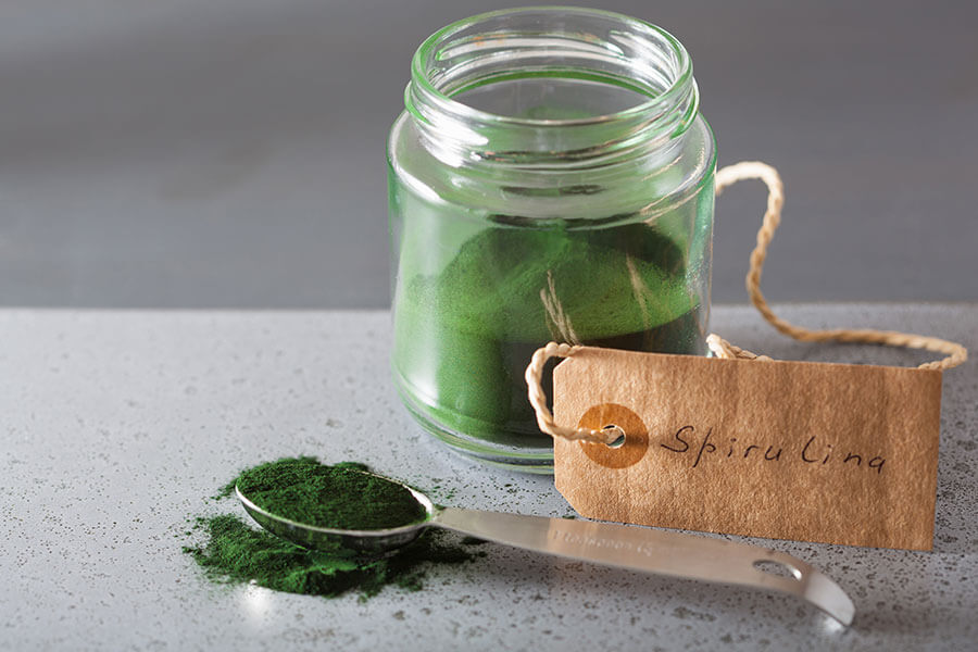 Tảo xoắn Spirulina rất giàu dinh dưỡng và tốt cho sức khỏe
