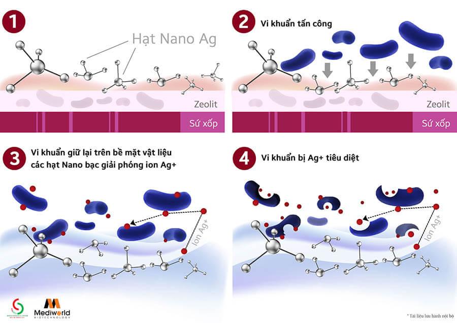Cơ chế hoạt động kháng khuẩn của nano Bạc