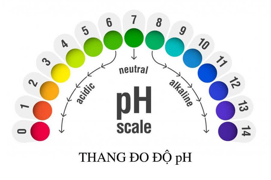 Thang đo độ pH của da