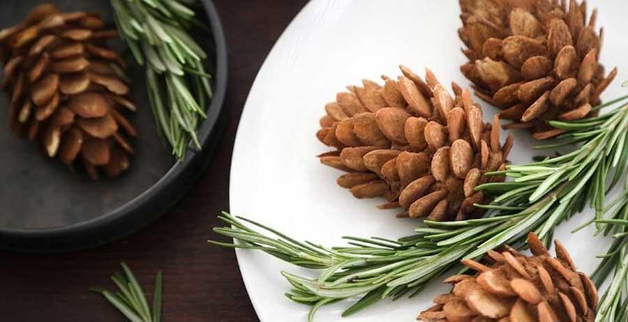 Chiết xuất từ cây Thông đỏ được ứng dụng nhiều trong các sản phẩm chăm sóc, chống lão hóa da