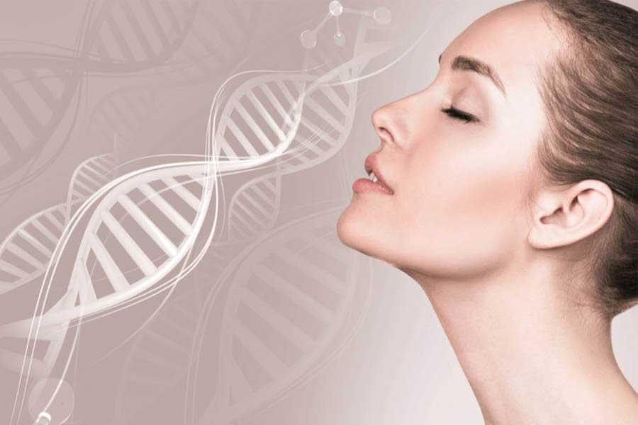 Collagen giúp duy trì vẻ đẹp của làn da