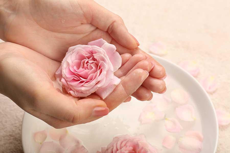 Tinh chất hoa hồng giúp làm đẹp và trẻ hóa da