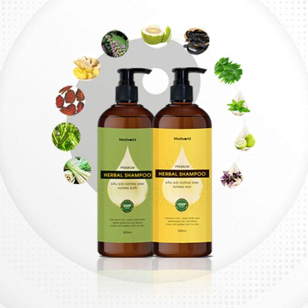Dầu gội dưỡng sinh Premium Herbal Shampoo 2