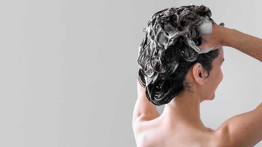 Gội đầu thường xuyên với sản phẩm phù hợp để ngăn ngừa gàu và nuôi dưỡng da đầu