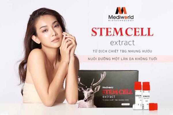Stemcell Extract – Nuôi dưỡng cho bạn một làn da khỏe đẹp